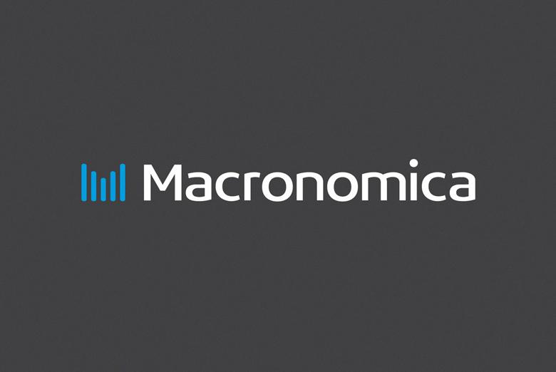 Нейминг и бренд-разработка проекта MACRONOMICA