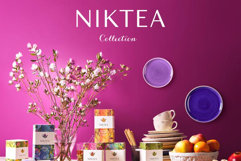 Разработка брендбука для компании Niktea