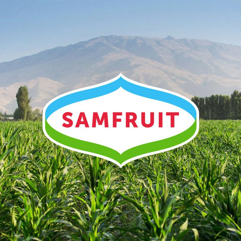 Samfruit